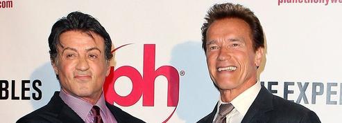 Stallone vs Schwarzenegger : le décompte qui fait mal