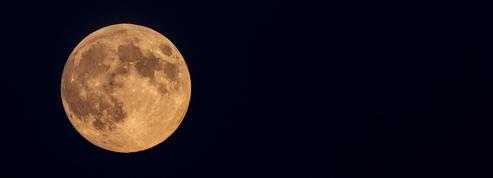 Peut-on utiliser des engrais lorsqu'on cultive avec la lune ?