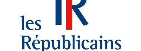 Jeunes Républicains: une présence discrète au Congrès