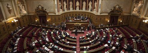 Loi Rebsamen: le Sénat à l'offensive