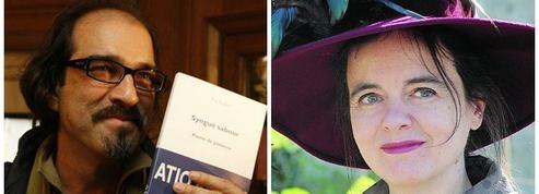 Rentrée littéraire : 589 romans prévus pour 2015