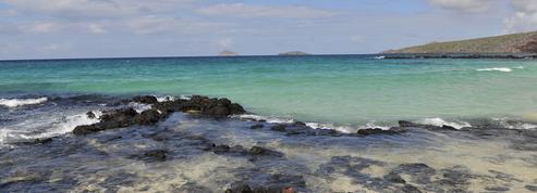 L'Equateur proscrit les sacs plastiques sur les îles Galápagos