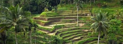 Bali, l'île des dieux à la beauté unique