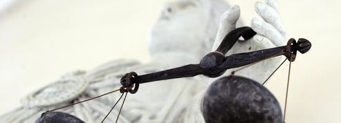 Les deux mineurs revenus de Syrie pourraient être jugés pour «terrorisme»