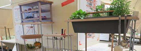 Biceps Cultivatus: un potager dans votre cuisine