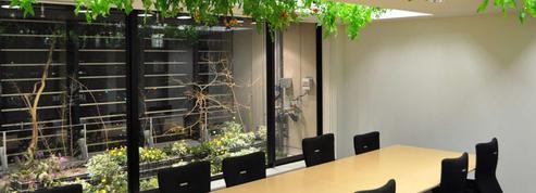 Une entreprise transforme ses bureaux en exploitation agricole