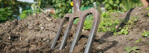 Préparez vos sols pour l'hiver