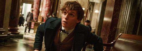 Les Animaux fantastiques : un premier trailer pour le spin-off d'Harry Potter