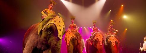 Les spectacles de cirque à ne pas manquer pendant les fêtes