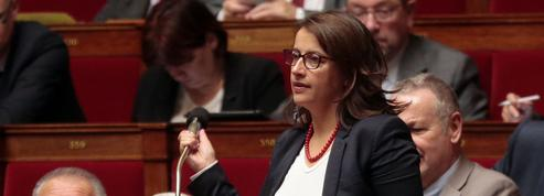 Duflot veut empêcher toute modification de la constitution sous l'état d'urgence