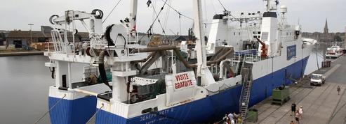La pêche française sort la tête de l'eau