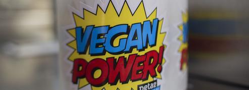 Le Vegan Pop, une nouvelle espèce de festival