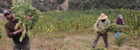 Maroc: Ketama, ville hors-la-loi du Rif et grenier à haschich de l'Europe