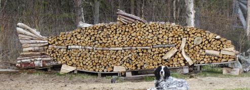Les secrets pour obtenir du «bon» bois de chauffage