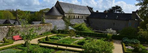 Près de Brest, un étonnant jardin d'arbres et arbustes médicinaux