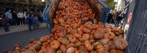 Les agriculteurs bio attendent leurs subventions en retard de... deux ans