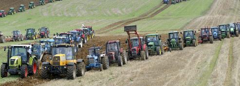 Ces exploitants agricoles qui se partagent un salarié