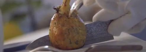 Les plats les plus spectaculaires : le fenouil en croûte d'algue de Sylvestre