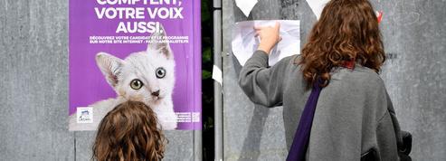 Après les législatives, le parti animaliste veut transformer l'essai