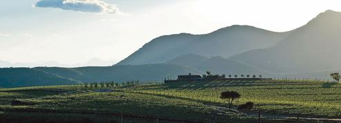 Sur la Costa Brava, la vigne des vacances