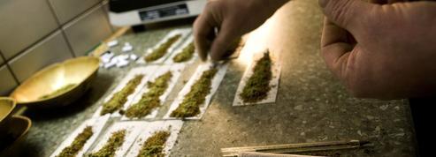 La légalisation du cannabis peut faire augmenter la consommation