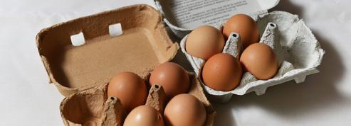 La crise du fipronil profite aux éleveurs français