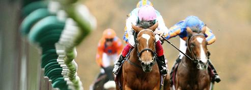 Les chevaux de course, une passion avant tout