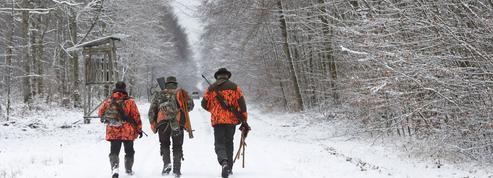 En proie aux clichés, la chasse française s'est pourtant transformée