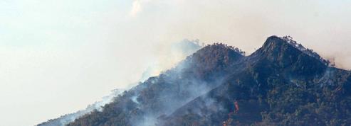 Incendies en Nouvelle-Calédonie : près de 800 hectares partent en fumée