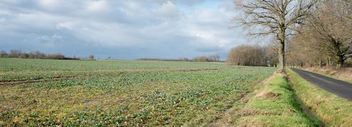 L'insatiable appétit des Chinois pour les terres agricoles françaises