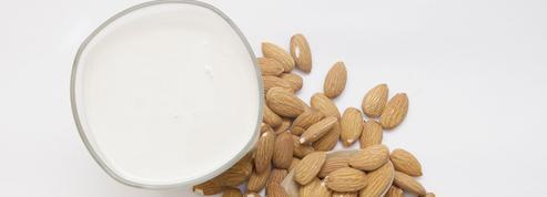 Un «lait végétal» peut-il remplacer le lait de vache?