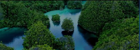 Revivez «20.000 lieux sur les mers», les perles de l'Indonésie
