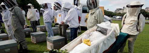 Soutenus par Hulot, les apiculteurs attendent un plan du gouvernement