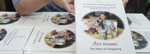 En Thaïlande, critiquer la chienne du roi est un crime de lèse-majesté