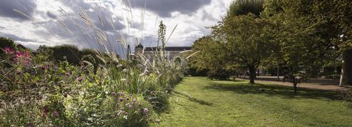 Le Jardin des Plantes, une fenêtre ouverte sur la biodiversité