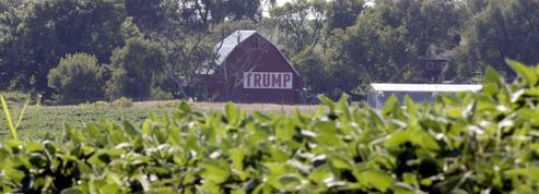 Les États-Unis, premier fournisseur de soja de l'Union Européenne