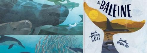 Livre jeunesse: à la découverte du monde mystérieux des baleines