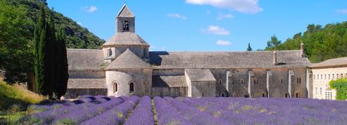 Abbaye de Sénanque : SOS, patrimoine en danger!