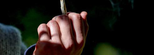 Arrêter le cannabis et la mémoire revient