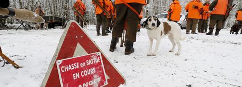 La chasse bientôt interdite le dimanche?