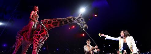 Stéphanie de Monaco: «Inscrire le cirque traditionnel au patrimoine de l'humanité»