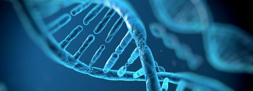 Sophia Genetics, pépite de la «healthtech», lève 77millions de dollars