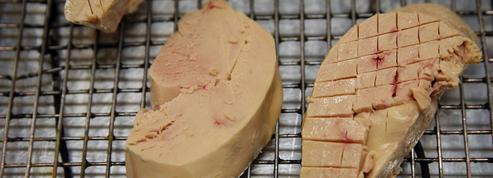 Où en est la fronde anti-foie gras dans le monde ?