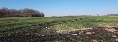 Yvelines: du pétrole dans les champs après une fuite sur un pipeline