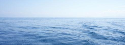 Les canicules marines, ce fléau invisible qui touche les profondeurs