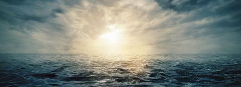 Deuxième round des négociations visant à protéger la haute mer
