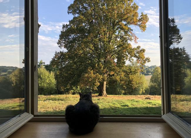 Une vue de la maison sur le parc, grand de 2,5 hectars