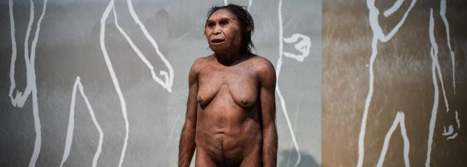 «Il y a eu des transferts de gènes entre Neandertal et Homo sapiens»