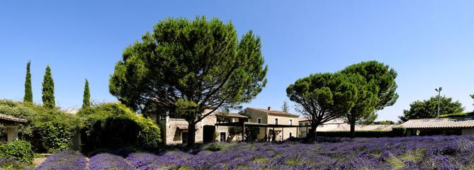 L'art de vivre en Provence : nos adresses et nos coups de cœur dans le Luberon