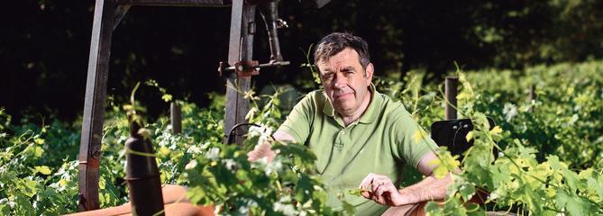 De la politique à la viticulture : Jean-Christophe Comor, d'une certaine idée à l'autre